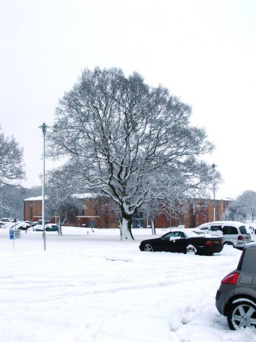 Car Park in snow.JPG